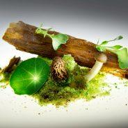 Sirius Cookery Course: Curso de alta cocina y gastronomía para chefs de superyates en Barcelona