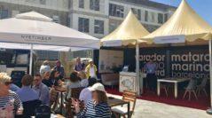 Varador 2000 presenta novedades, servicios y actividades industriales en Palma Superyacht Show